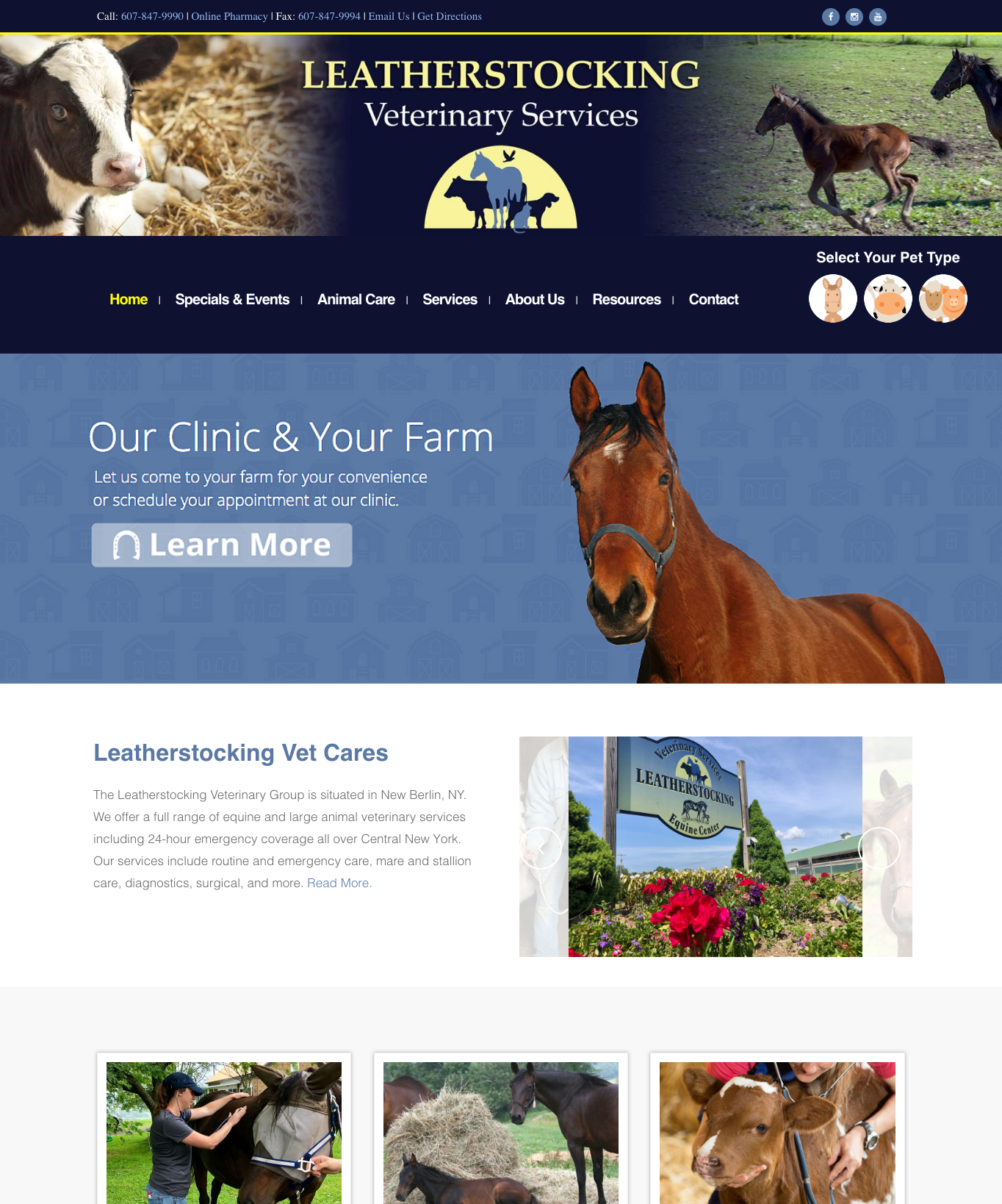 Leatherstocking Veterinary Group